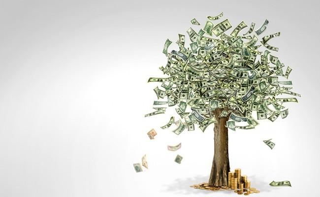 Money tree made of hundred dollar bills